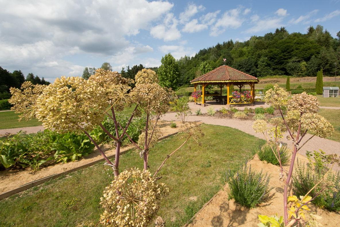 Reportage photos d'un jardin. Photographe pro lorraine Alsace luxembourg Moselle Metz Nancy Forbach Thionville Creutzwald