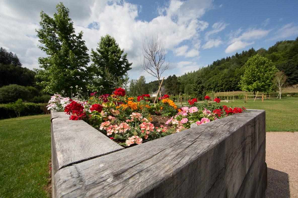 photo de paysages et jardins par photographe professionnel en moselle, lorraine et Alsace